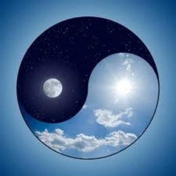 yin yang (1)