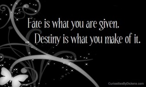 fate-vs-destiny3